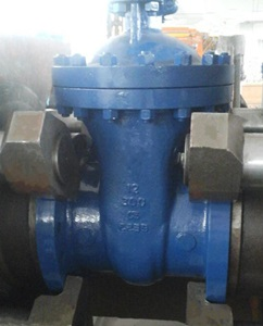 Gate Valve, 14 Inch, ANSI 300, Gear Operated