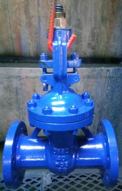 Gate Valve, Carbon Steel, PN40